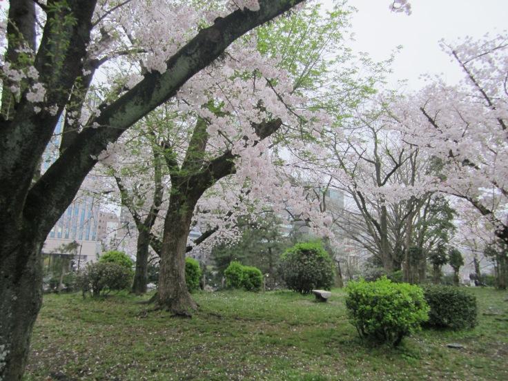 Ohori park 4